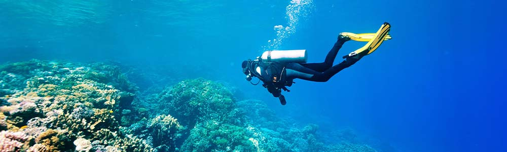 Tour Itinerary:Day Trip Scuba Diving from Hurghada