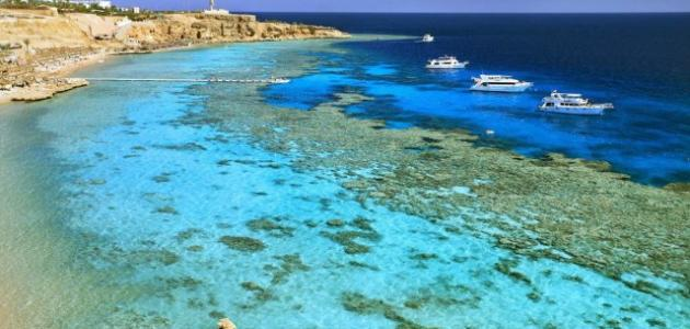 Information About Safaga Egypt | Safaga Red Sea | Egypt Tours portal