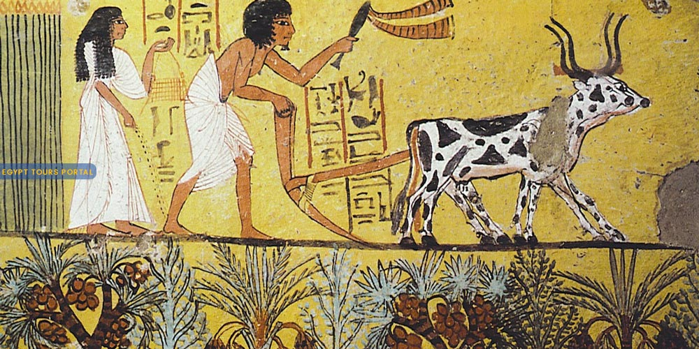 Ancient Egyptian Inventions In Ships, Trade & Farming - Egypt Tours Portal