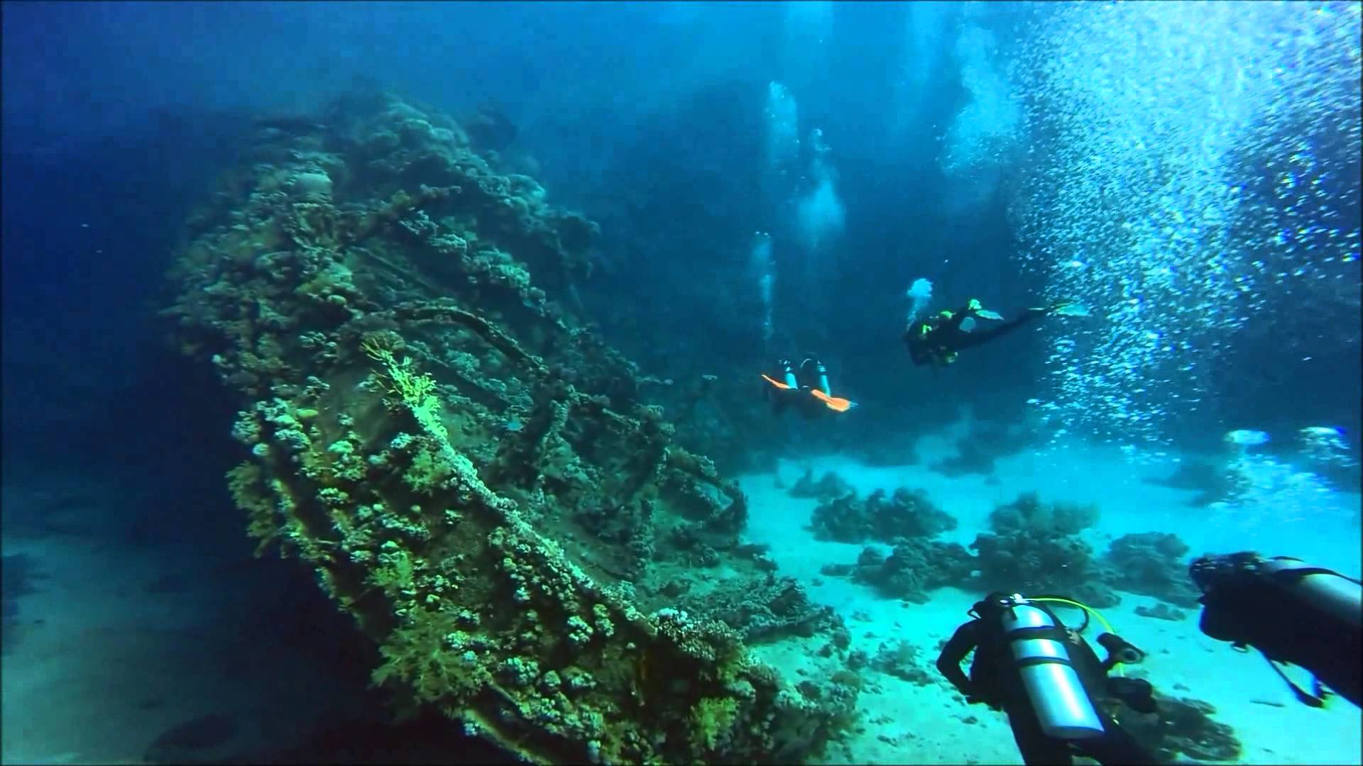 Marsa Abu Galawa - Egypt Tours Portal