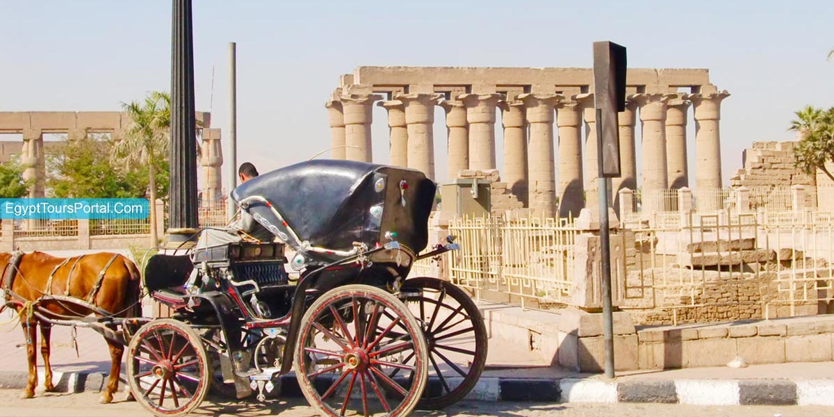 Tour Itinerary:Luxor Horse Carriage Trip