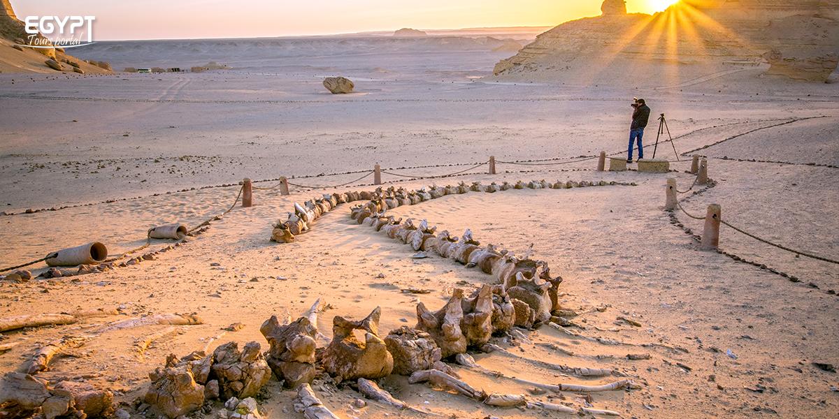 History of Faiyum Oasis - Faiyum Oasis Tavel Guide - Egypt Tours Portal