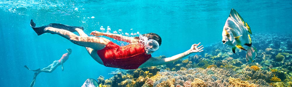 Tour Itinerary:Makadi Bay Excursion Snorkeling Trip