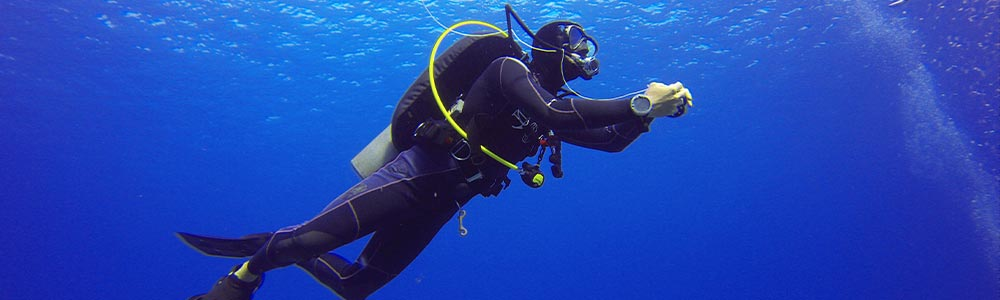 Diving Excursions In Marsa Alam