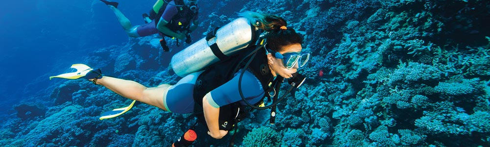 Day Four:Scuba Diving in Hurghada