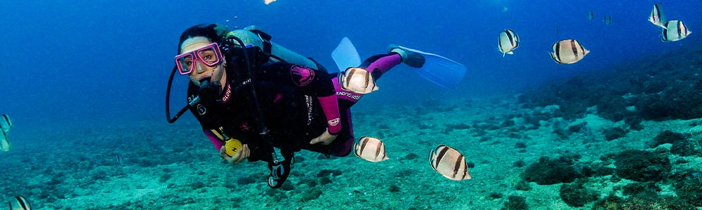 The Itinerary of Soma Bay Diving Excursion
