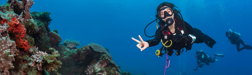Tour Itinerary:Diving Tour from El Gouna