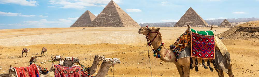 Riding Camel in Giza Pyramids Itineray