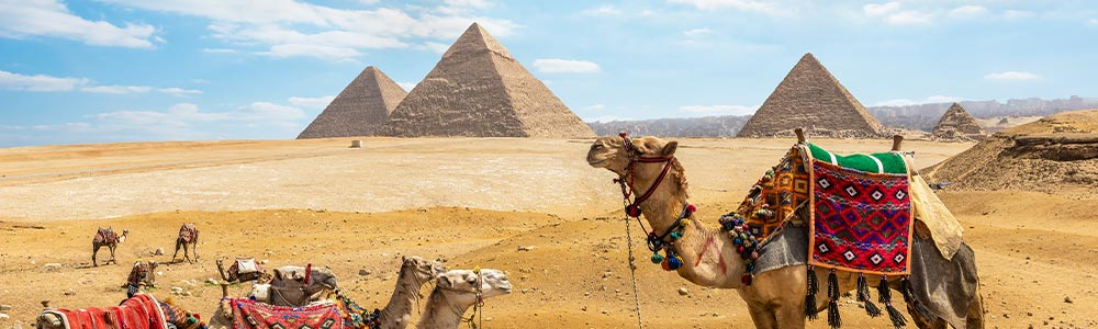 Tour Itinerary:Cairo Day Tour from El Gouna
