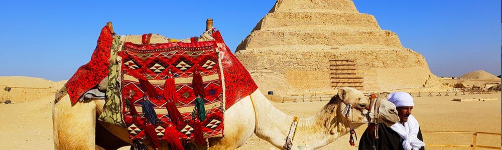 Day Two:Giza Complex + Saqqara Step Pyramid Visit