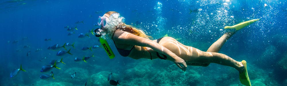 Day Eight:Hurghada Snorkeling Trip