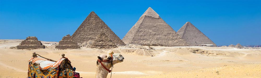 Day One:Fly to Cairo - Visit the Pyramids & the Museum