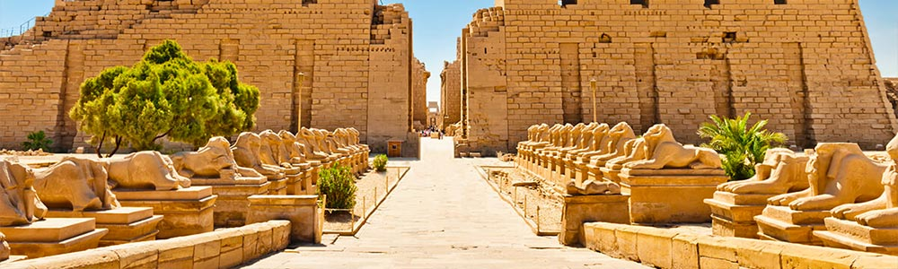 Day Three:Tour to Luxor Attractions