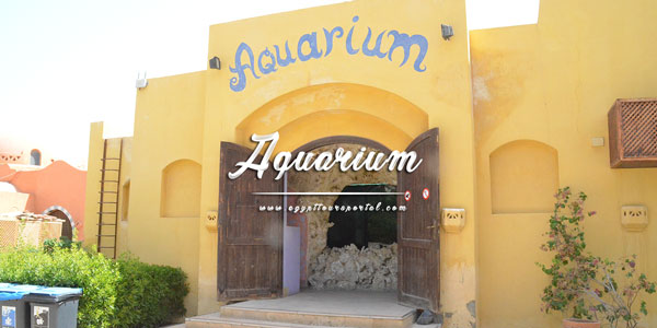 Aquarium - Things to Do in El Gouna - Egypt Tours Portal