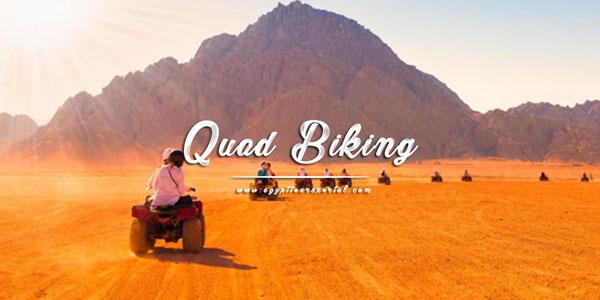 Quad Biking in the Desert - Things to Do in El Gouna - Egypt Tours Portal