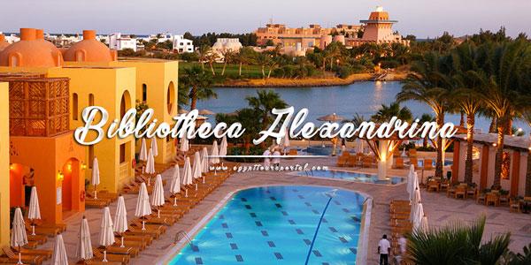 The Bibliotheca Alexandrina El Gouna - Things to Do in El Gouna - Egypt Tours Portal