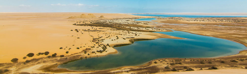 The Itinerary of Tour to Fayoum Oasis From Cairo