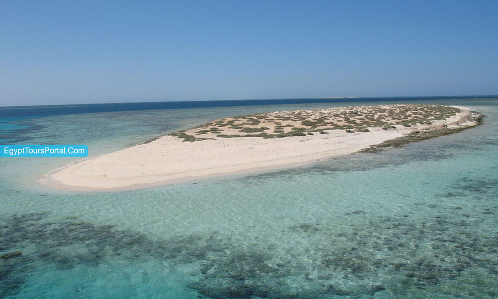 Marsa Alam Rocky Island - Things to Do in Marsa Alam - Egypt Tours Portal