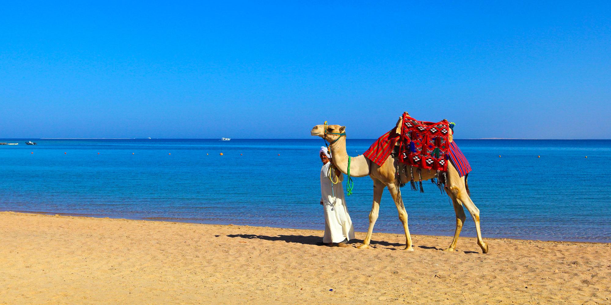 soma bay - egypt tours portal