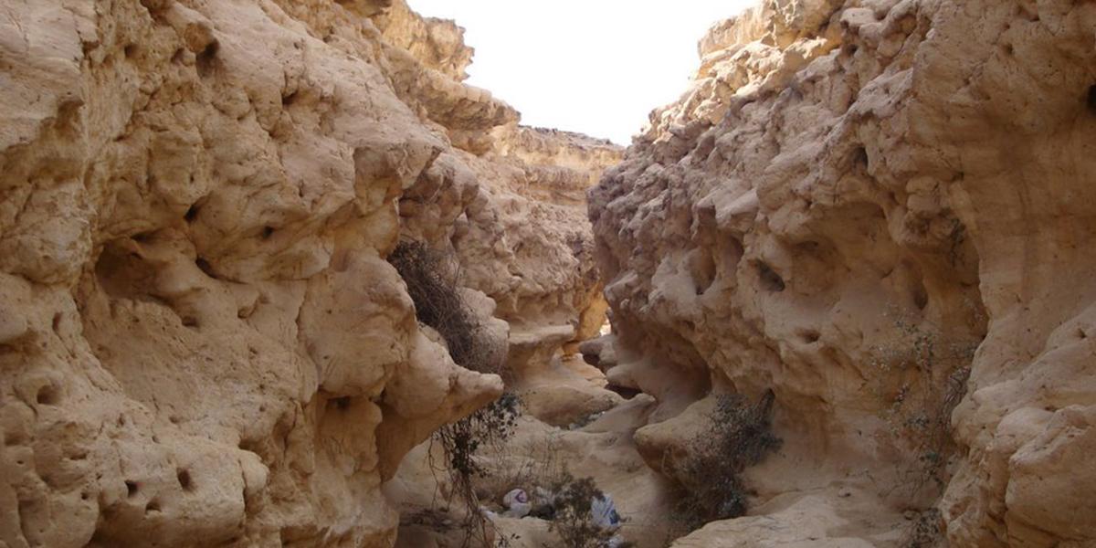 Wadi Delga Protectorate - Hiking in Egypt - Egypt Tours Portal