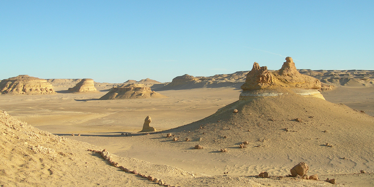 Whale Valley - Egypt Desert Deserve to Discover for Adventure Travelers - Egypt Tours Portal