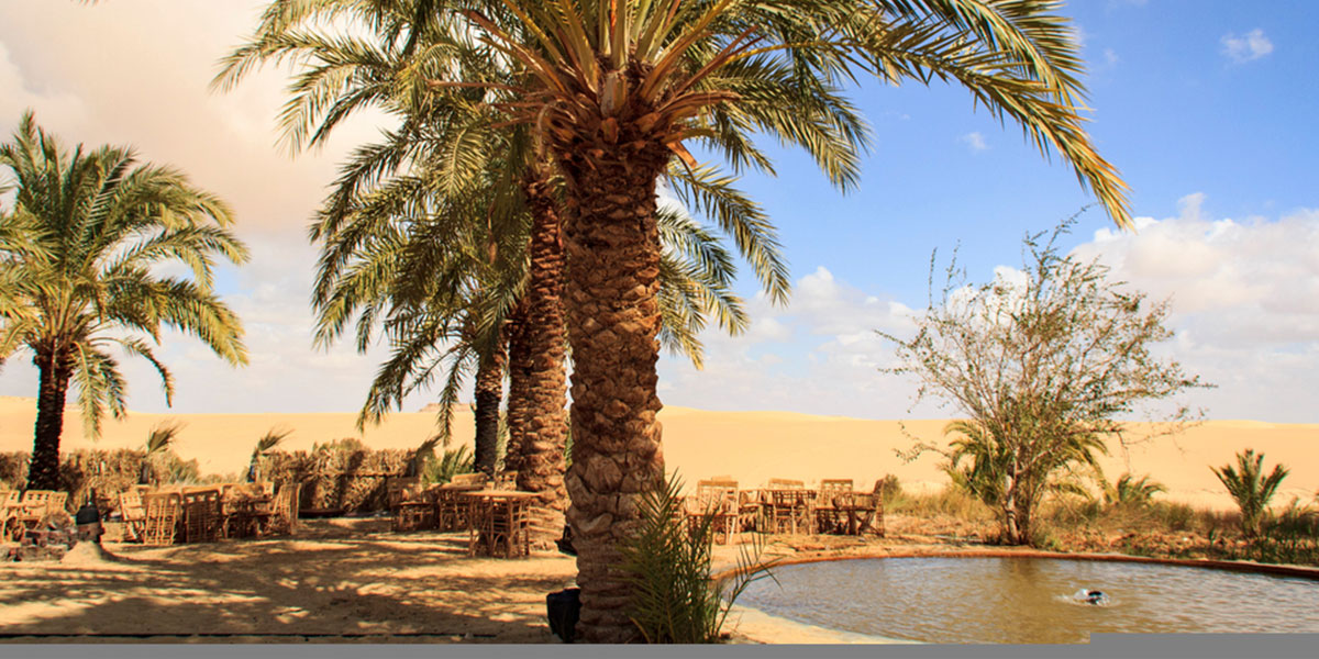 Siwa Oasis - The Best Camping Spots in Egypt - Egypt Tours Portal
